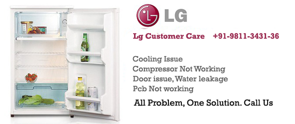 Lg fridge Service Centre